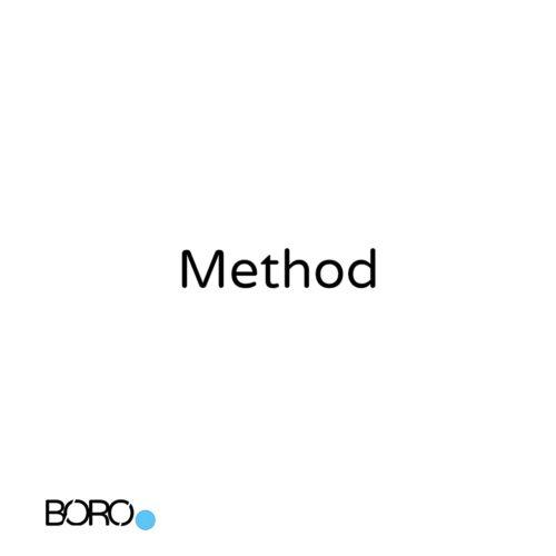 Method: BORO's II fases of progress